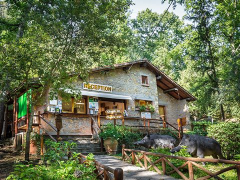 Camping & Village Montescudaio - Camping Pise - Image N°19