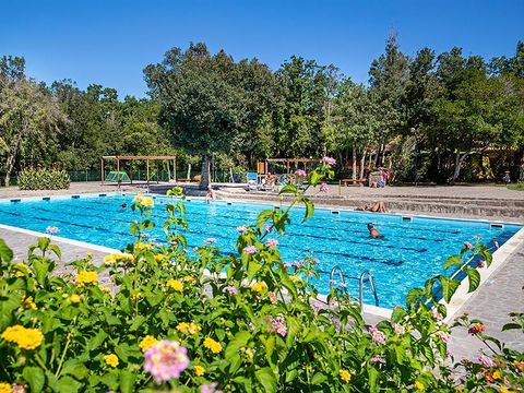 Camping & Village Montescudaio - Camping Pise - Image N°8