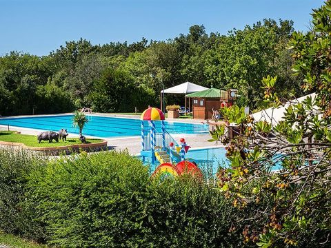 Camping & Village Montescudaio - Camping Pise - Image N°7