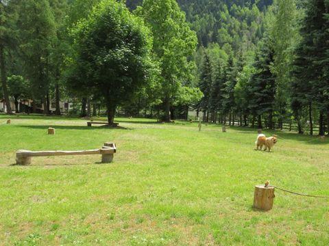 Camping Les Mélèzes - Camping Hautes-Alpes - Image N°6
