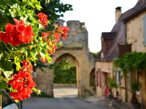 Dordogne  Camping Les Belles Rives - Camping Paradis - Camping Dordogne - Afbeelding N°21
