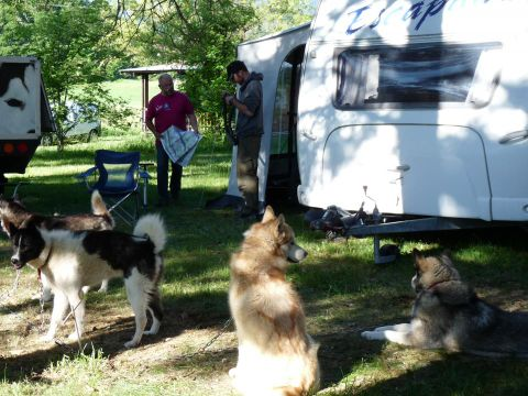 Camping aire naturelle Les Pins - Camping Drome - Image N°2