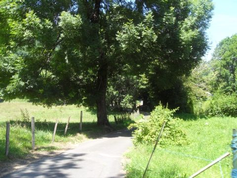 Camping aire naturelle Municipale - Camping Cantal - Image N°2