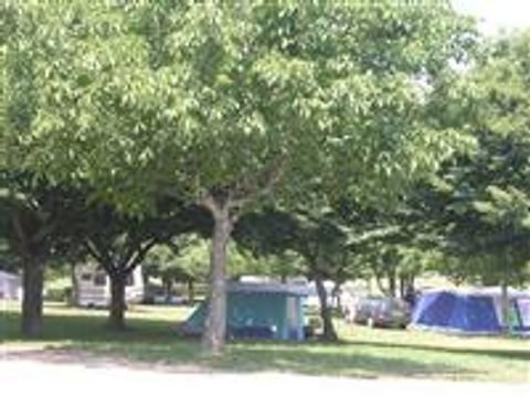 Camping aire naturelle du Bois Coutal - Camping Correze - Image N°2