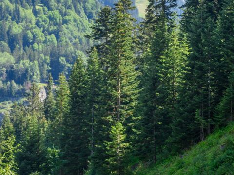 Camping Alpes Lodges Le Parc Isertan - Camping Savoie - Image N°6