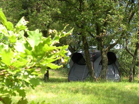 Bel'epoque du Pilat - Camping Sites et Paysages - Camping Loire - Image N°2