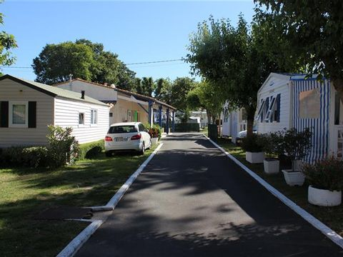 Charente-Maritime  Camping Les Nonnes - Camping Charente-Maritime - Afbeelding N°6