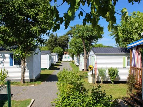Charente-Maritime  Camping Les Nonnes - Camping Charente-Maritime - Afbeelding N°2