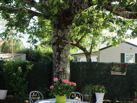 Charente-Maritime  Camping Les Nonnes - Camping Charente-Maritime - Afbeelding N°3
