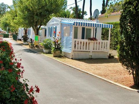 Charente-Maritime  Camping Les Nonnes - Camping Charente-Maritime - Afbeelding N°4