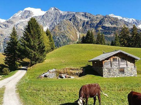 Camping Les Prés De L'Arly - Camping Haute-Savoie - Image N°9