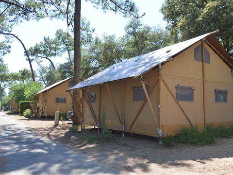 Camping Les Pins d'Oléron - Camping Paradis - Camping Charente-Maritime - Image N°2