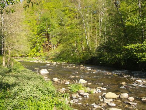 Camping Le Lachat - Camping Haute-Savoie - Image N°3