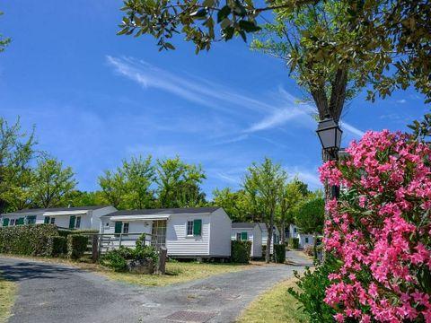 Camping Les Gros Joncs - Camping Charente-Maritime - Image N°30