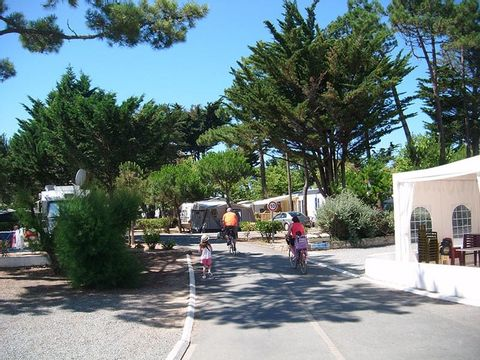 Camping Antioche - Camping Charente-Maritime - Image N°24