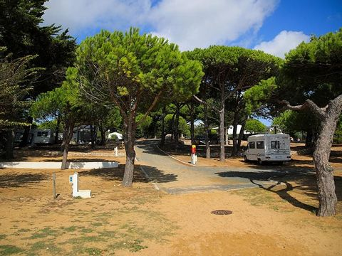 Camping Antioche - Camping Charente-Maritime - Image N°27