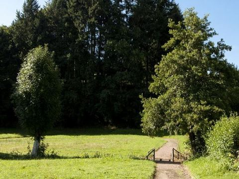 Camping le Paluet - Camping Saone-et-Loire - Image N°6