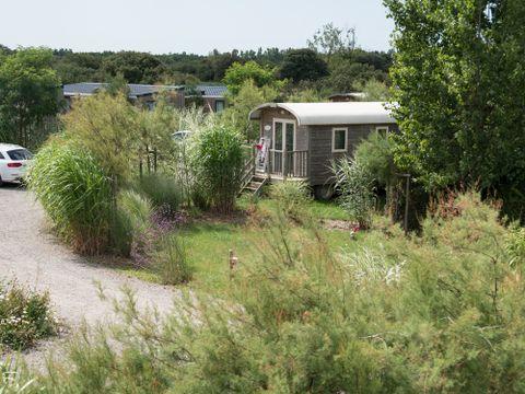 Flower Camping le Petit Paris - Camping Vendée - Image N°15