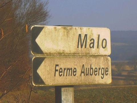 Aire Naturelle De Camping À La Ferme - Camping Saone-et-Loire - Image N°4