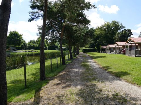 La Bretonnière - Camping Paradis - Camping Vendée - Image N°36