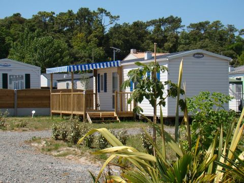 Camping Le Fief - Camping Vendée - Image N°2
