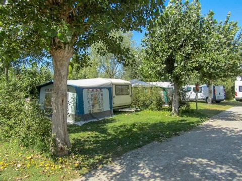 Camping Le Bois Collin - Camping Vendée - Image N°2
