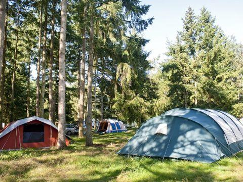 Camping aire naturelle Municipale - Camping Loir-et-Cher
