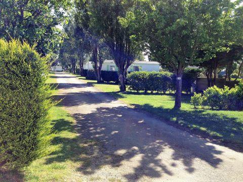 Camping du Goh'velin - Camping Morbihan - Image N°7
