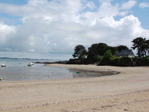 Camping L'Oasis 56 - Camping Morbihan - Image N°9