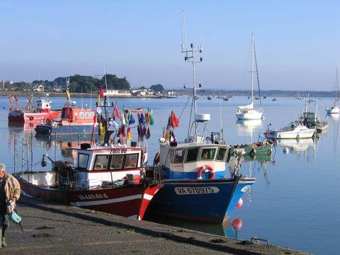 Camping La Plage - Camping Morbihan - Image N°13