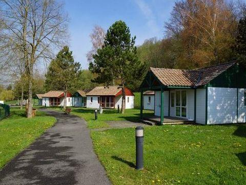 Camping les Lupins - Camping Haut-Rhin - Image N°7