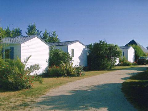 Camping La Ferme Fleurie - Camping Morbihan - Image N°4