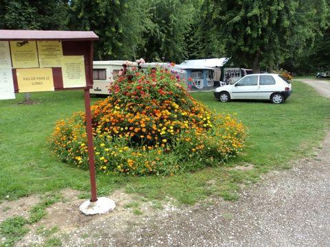 Camping Municipal Le Pre Du Roi - Camping Yonne - Image N°3