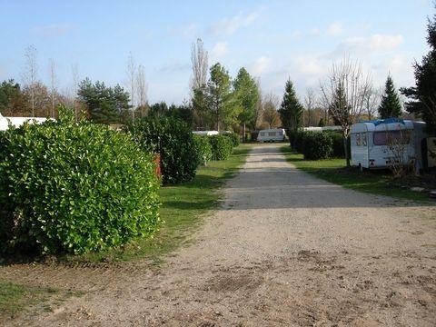 Camping Municipal - Camping Loiret - Image N°3