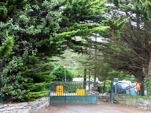 Camping G.C.U. Les Pins - Camping Morbihan - Image N°3
