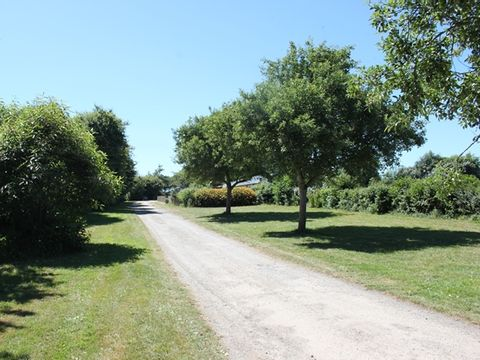 Camping Le Chateau De Belon - Camping Finistere - Image N°3