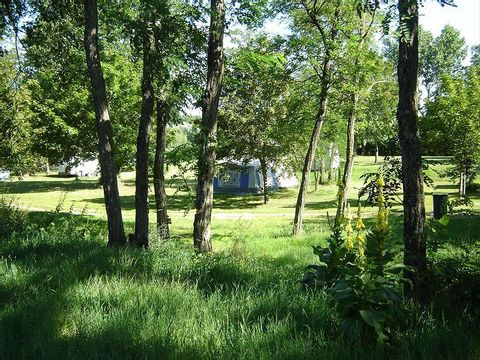 Camping L'isle Aux Moulins - Camping Loiret - Image N°3