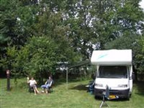 Les Grèbes du Lac de Marcenay - Camping Cote-Or - Image N°2