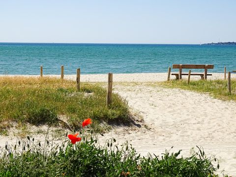 Camping Les Saules  - Camping Finistere - Image N°5
