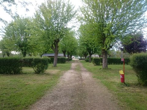Camping De L'ile Saint-Martin - Camping Yonne - Image N°2