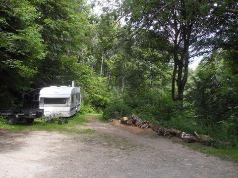 Camping Im Berg - Camping Haut-Rhin - Image N°3
