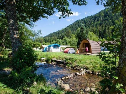 Flower Camping Verte Vallée - Camping Vosges - Image N°13