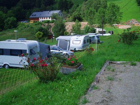 Camping à le ferme Les Bouleaux - Camping Haut-Rhin