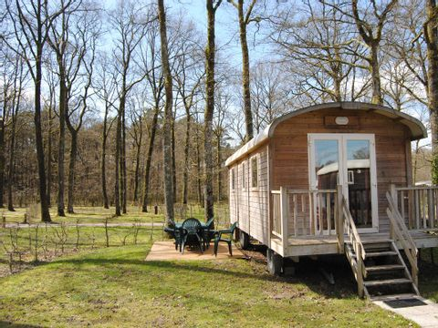 Flower Camping La Foret - Camping Sarthe - Image N°2