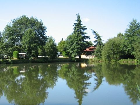 Forest View Campsite & B&B - Camping Orne - Image N°2