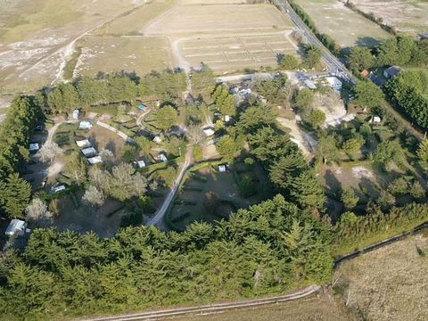 Camping Ode Vras - Camping Finistere - Image N°6