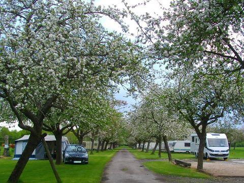 Camping aire naturelle de Legrix - Camping Calvados