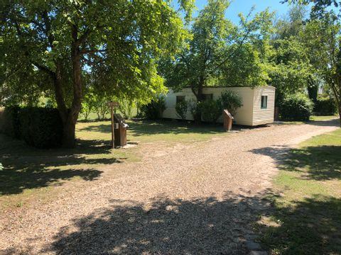 Camping La Pointe - Camping Aisne - Image N°20