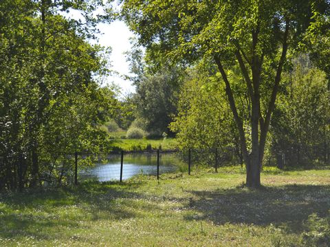 Camping Parc Des Cygnes - Camping Somme