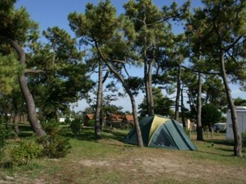 Camping municipal Les Galets de la Mollière - Camping Somme - Image N°3